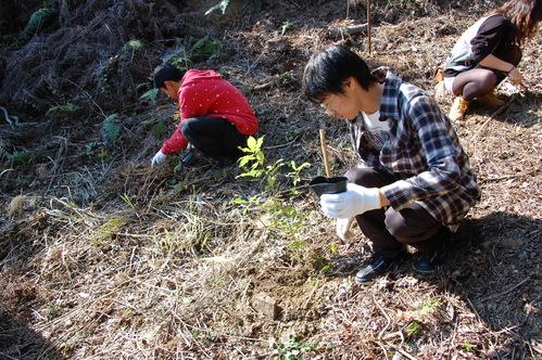 岬高校「MISAKIプロジェクト2010」;孝子の森植樹サポート_c0108460_20142296.jpg