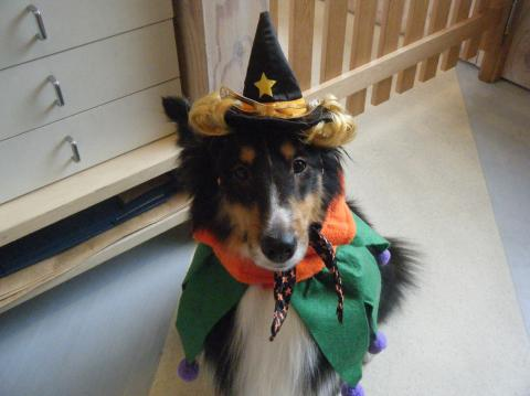 ★Happy Halloween★ 3_b0186183_1894398.jpg