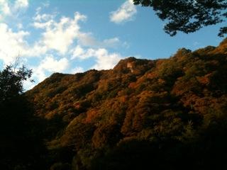さては秋を通り越したな_c0174484_23131233.jpg
