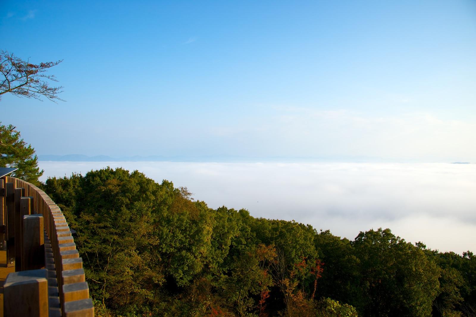 霧の海_f0231512_22361652.jpg