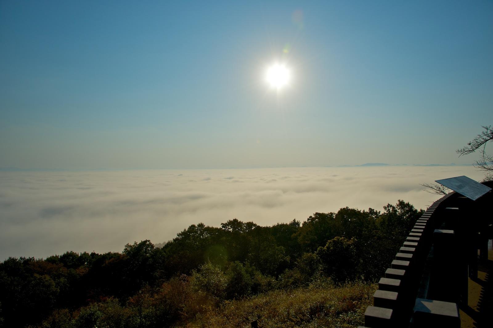 霧の海_f0231512_2240242.jpg