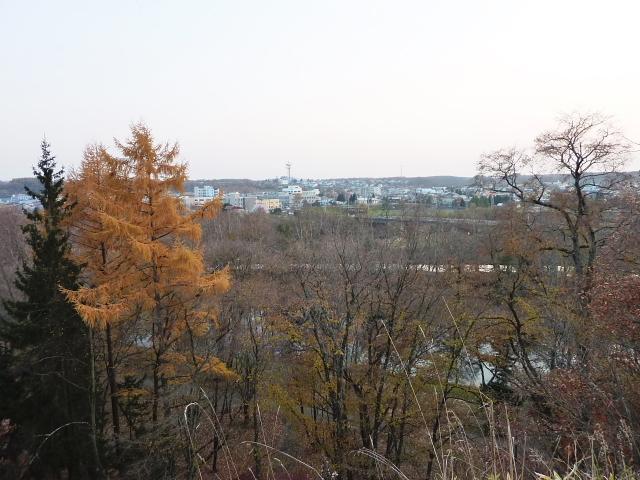 2010年11月6日(土):堤防散歩_e0062415_1711462.jpg