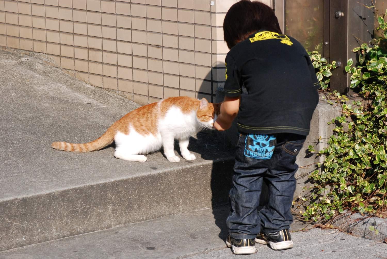 天王寺動物園へ_b0069128_9403993.jpg