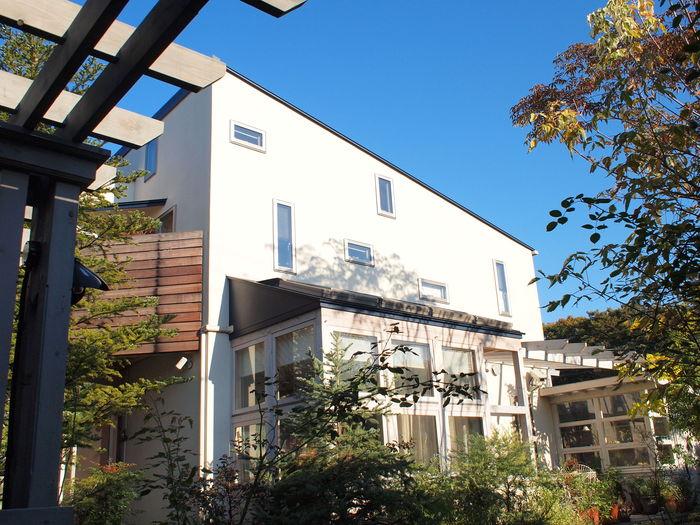 「鶴ヶ島の家」 garden、potting shed_f0230666_10323472.jpg