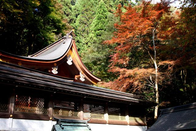 貴船神社 お火焚き祭1_e0048413_22362576.jpg