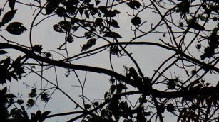 f0044029_2010248.jpg