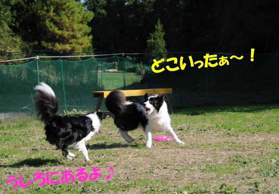 c0147241_21305852.jpg