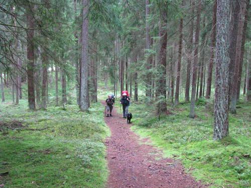オパの散歩道3 歩いて旧東ドイツまで Jenaを目指して_f0116158_2243530.jpg