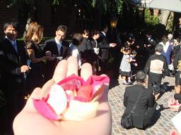Nちゃん\'s Wedding Party_a0102784_2331323.jpg