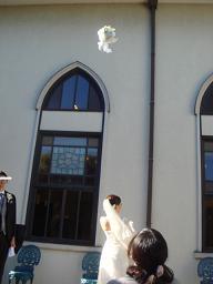 Nちゃん\'s Wedding Party_a0102784_2354954.jpg