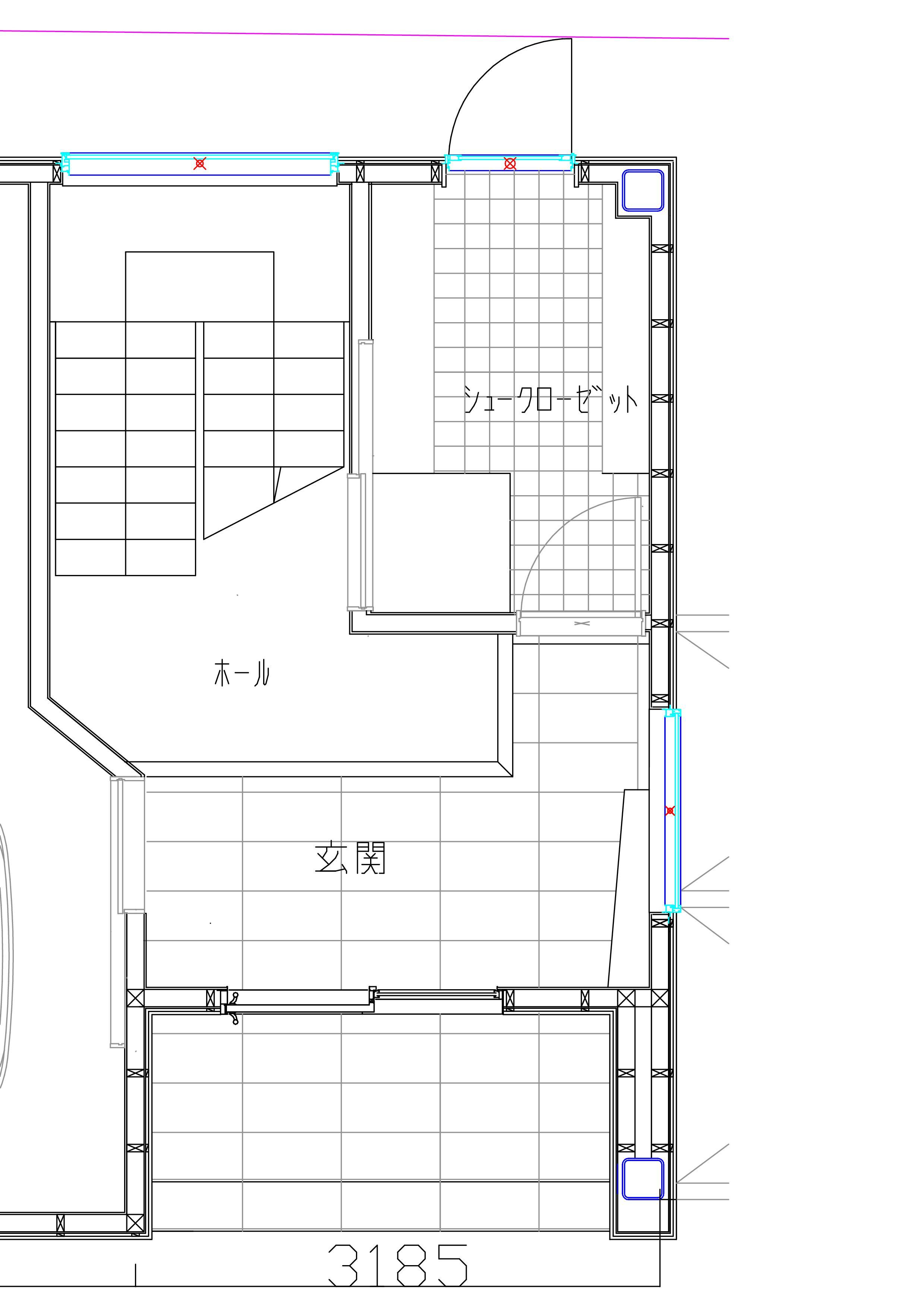 シュ-ズ クロ-ゼット (ケ-ス1) _e0214805_912699.jpg