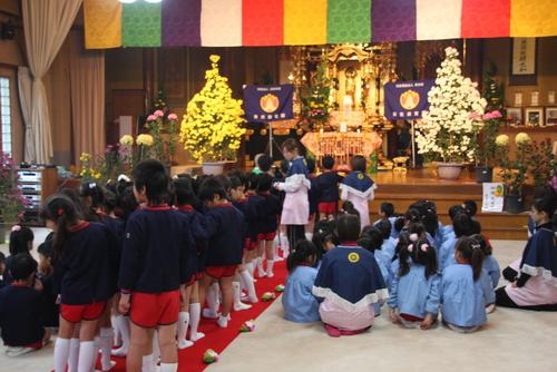 11月11日は、お寺で753法要菊花展があります。_b0188106_19513020.jpg