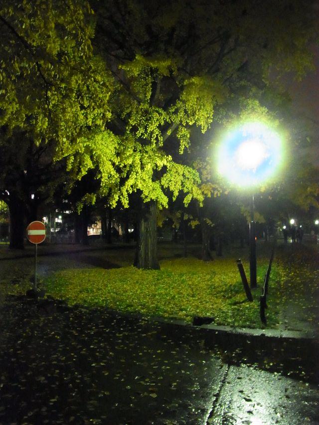 雨間をぬって帰宅_c0025115_22405753.jpg
