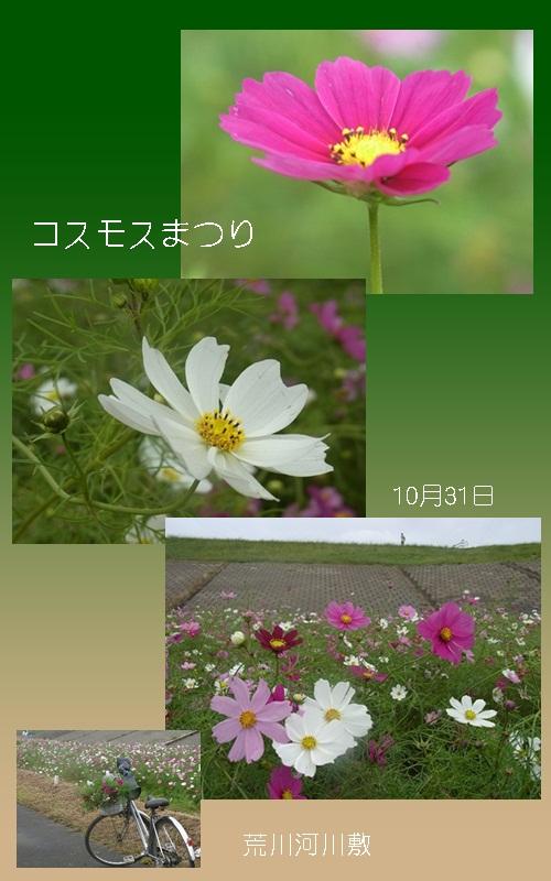 c0223117_20551268.jpg