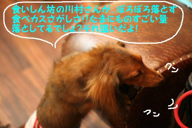 b0130018_18185077.jpg