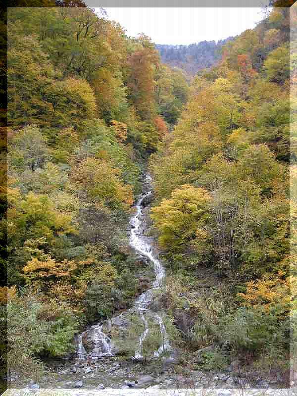 谷川岳_f0100825_20424275.jpg