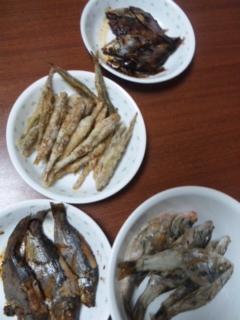 釣った魚を料理_e0114246_1125076.jpg