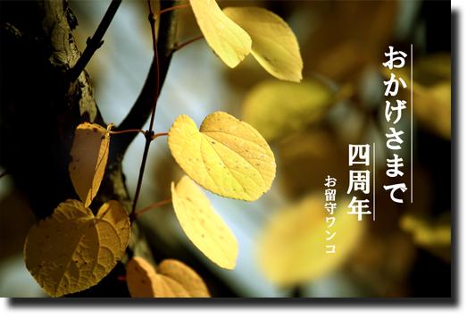 f0111147_16103911.jpg