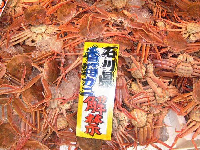 蟹&トータス松本さん ♪_c0110051_1453145.jpg