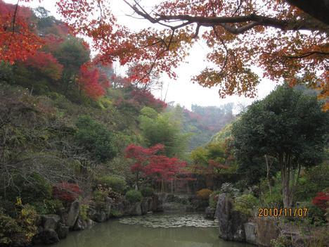 園も秋色に_f0085369_7334621.jpg