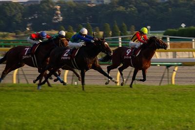 アルゼンチン共和国杯は、素質馬トーセンジョーダンが待望の初重賞制覇 _b0015386_04713.jpg