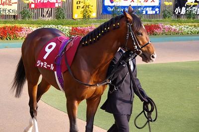 アルゼンチン共和国杯は、素質馬トーセンジョーダンが待望の初重賞制覇 _b0015386_05323.jpg