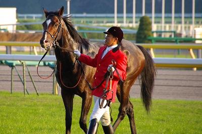 アルゼンチン共和国杯は、素質馬トーセンジョーダンが待望の初重賞制覇 _b0015386_074344.jpg