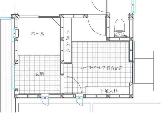 シュ-ズ クロ-ゼット (ケ-ス2)_e0214805_8262671.jpg