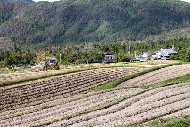 山里 越畑_e0048413_1931486.jpg