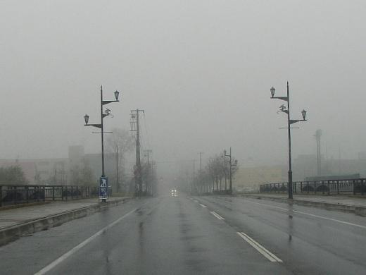 2010年11月9日(火):天パはクリクリに_e0062415_1749853.jpg