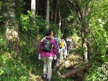 高浜町で開催された「森林療法」研修会に参加しました(その2)_e0061225_11552494.jpg
