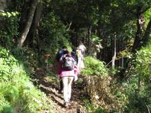 高浜町で開催された「森林療法」研修会に参加しました(その2)_e0061225_1156448.jpg