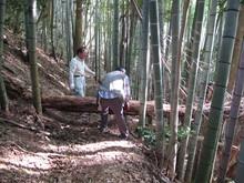 高浜町で開催された「森林療法」研修会に参加しました(その2)_e0061225_12225331.jpg
