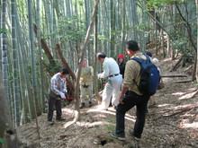 高浜町で開催された「森林療法」研修会に参加しました(その2)_e0061225_12231628.jpg