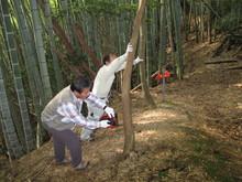 高浜町で開催された「森林療法」研修会に参加しました(その2)_e0061225_1223578.jpg