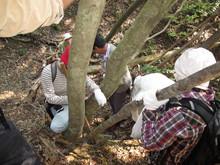 高浜町で開催された「森林療法」研修会に参加しました(その2)_e0061225_12593296.jpg