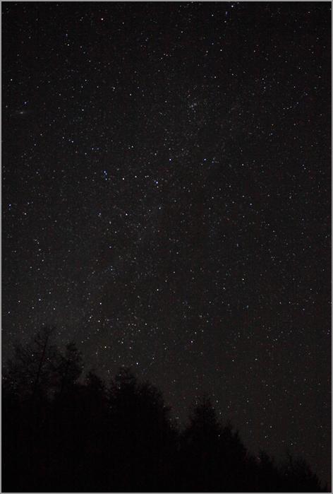 Shining Star_d0101050_1420539.jpg