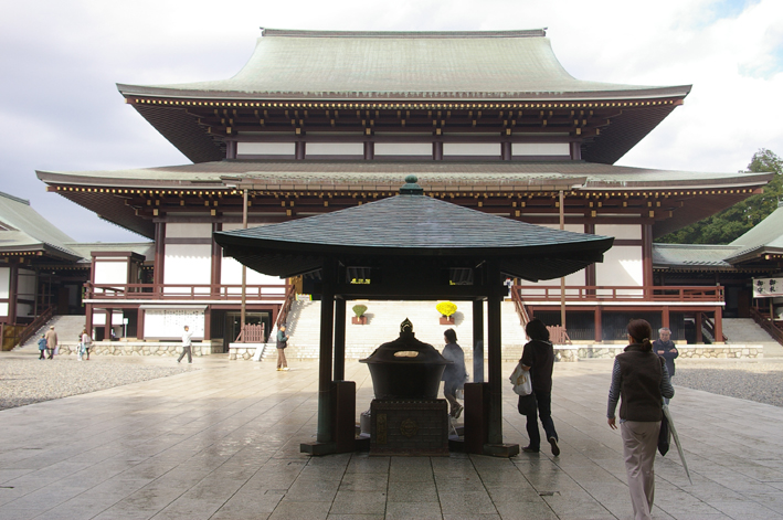 「東庄ふれあいまつり」の帰途、成田山新勝寺を参拝:11・4_c0014967_10142198.jpg