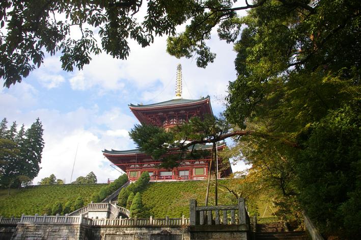 「東庄ふれあいまつり」の帰途、成田山新勝寺を参拝:11・4_c0014967_10153072.jpg