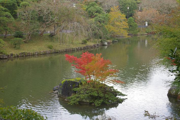 「東庄ふれあいまつり」の帰途、成田山新勝寺を参拝:11・4_c0014967_1017312.jpg