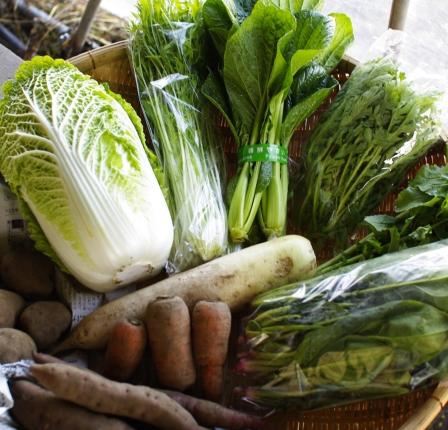 野菜セット不定期便 No.21-水 の発送 _c0110869_22505475.jpg