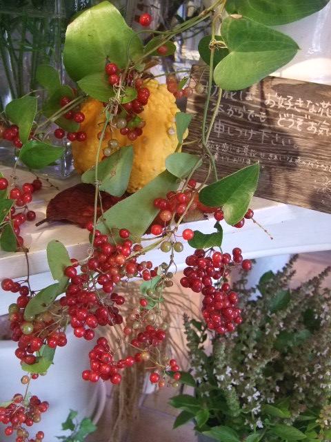 オークリーフ(今週も、老爺柿を置きました)_f0049672_12495067.jpg