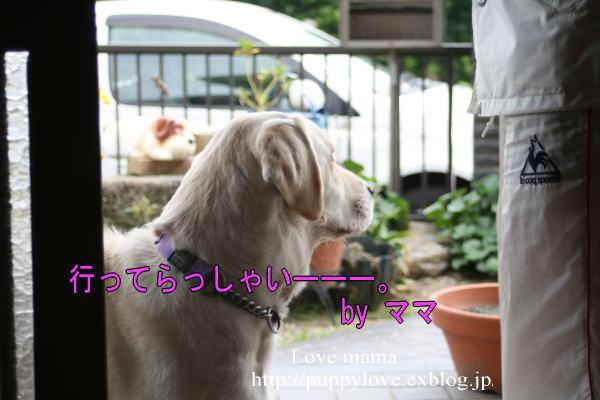 b0136683_10195233.jpg
