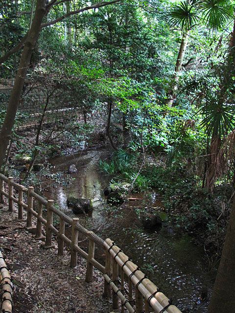 落合川を辿る(5)こぶし沢と落合川下流_c0163001_20304541.jpg