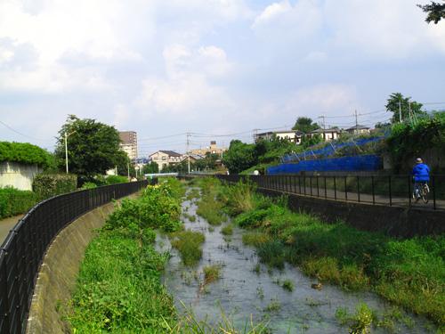 落合川を辿る(5)こぶし沢と落合川下流_c0163001_2032795.jpg