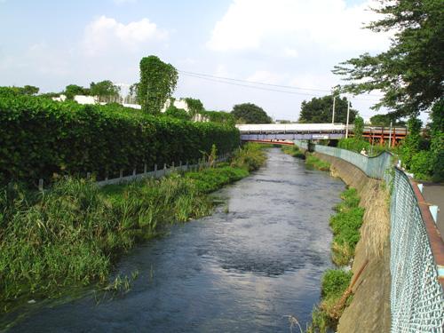 落合川を辿る(5)こぶし沢と落合川下流_c0163001_20341017.jpg
