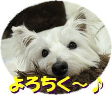 f0084422_1951732.jpg