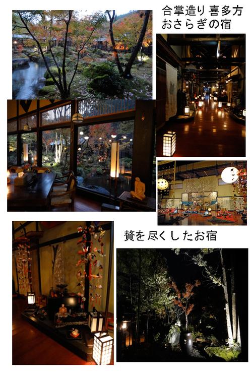 彩花便り_e0109554_23212624.jpg