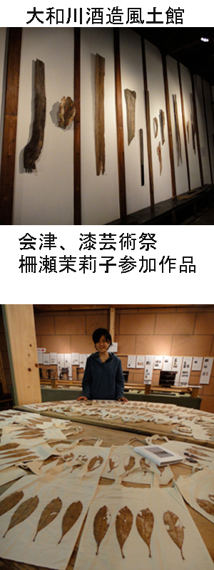 彩花便り_e0109554_2393558.jpg