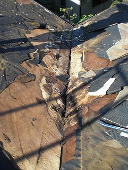 雨漏りしていた屋根の部分葺き替え~漏れ箇所は予想通りでした。_d0165368_6123918.jpg